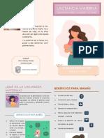 LM beneficios.pdf