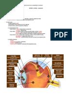 u2.l1.ochiul-anatomie.pdf