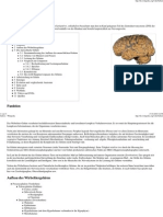 Gehirn 1