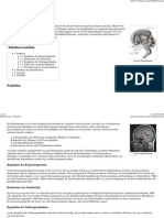 Gehirn 5