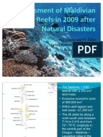 Coral Reef Status in 2009 Maldives Reefs