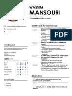 cv-wassim.pdf