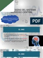 CLASE 13_ Patologías del snc  (1).pdf