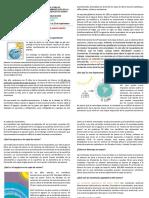 Capa de Ozono-Basica y Media