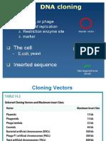 3 B DNA cloning and vectors