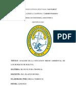 ANALISIS MEDIO AMBIENTAL DE LOS BOSQUES EN BOLIVIA.pdf