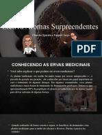Conhecendo Algumas Ervas Medicinais 28.07