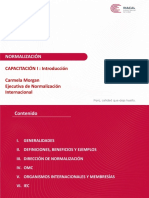 PPT Introduccion Normalizacion- Young Proffesional (1)