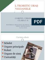 corpul_uman (1).pptx