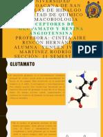 Receptores de Glutamato y Renina Angiotensina