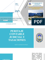 PERITAJE (4).pptx