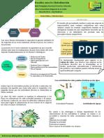Poster de Globalización en las empresas