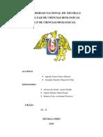PLAN DE MANEJO DE EISENIA FOETIDA.docx