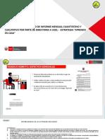 FORMATO INFORME N°01 - EXPLICACIÓN