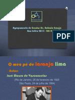 apresentaomeupdelaranjalima-131029095028-phpapp01