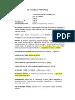 RTM CARGADOR FRONTAL (1)