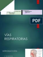 VIAS RESPIRATORIAS - Epitelio respiratorio y mucosa olfatoria