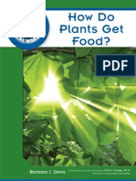 How Do Plants Get Food