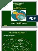 1.1 Esquematización e identificacion conjuntos numéricos.pdf