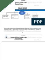 2.1Formato_de_alfabetizacion_informacional (3)