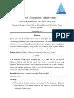 INFORME DE CERVANTES Y REALES SOBRE CALIBRACION DE UN CALORIMETRO