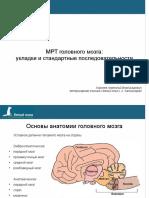 МРТ головного мозга собак (укладки и режимы)