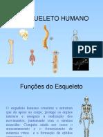 esqueletohumano