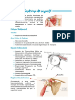 10. Síndrome do impacto.pdf