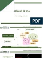 Aula 03 - Extração de DNA
