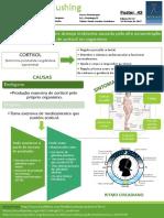 43 - Doença de Cushing.pdf