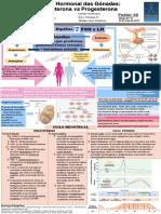 46 - FunçãoHormonaldasGónadas.pdf