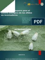 Plantas de banquero para el control biológico de.pptx
