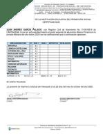 ReporteConstanciaDesempenio  juan.pdf