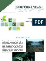 AGUAS SUBTERRANEAS (1)