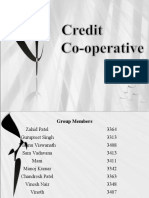 Credit Co-operative Societies
