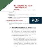 ESQUEMA NÚMERICO DEL TEXTO ARGUMENTATIVO- AVANCE