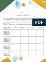 Ficha 4 Fase 4 (2) (1).doc