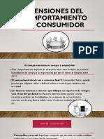 DIMENSIONES DEL COMPORTAMIENTO DEL CONSUMIDOR.