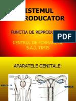 12.-SISTEMUL REPRODUCATOR
