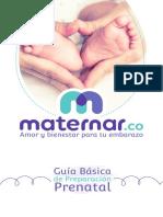 Guía-Prenatal-V4.pdf