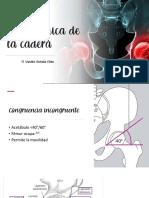 08_BIOMECÁNICA DE CADERA.pdf
