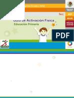 Guia_Efisica_primaria[1]