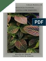 morfologia_folha.pdf