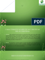 ecosistema colombiano actividad1_dioselina ruiz