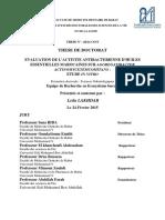 THESE (2).pdf