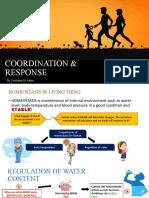 CHAP 3 - COORDINATION & RESPONSE