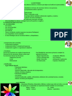 CLASE 10 AFECTIVIDAD (PPT)