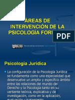 3._AREAS_DE_INTERVENCION_DE_LA_PSICOLOGIA