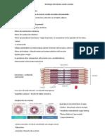 Histología del sistema cardio vascular