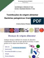 Aula T3 Salm_E coli_MicrobAlim_20122013